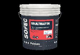 Multisatin